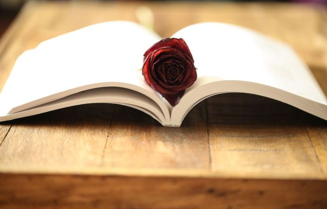3,000 Miles To Eternity open book with rose bloom on wooden table